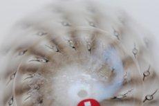 画像9: 北欧アートガラス/ビンテージガラス/Oiva Toikka/オイバトイッカ/イッタラ/Nuutajarvi/ヌータヤルヴィ/Birds/バード/Raquel/Annual Bird 2009 (9)