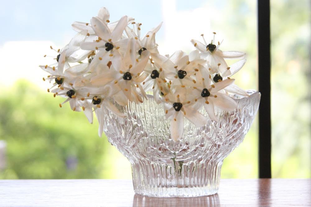 画像1: ビンテージ北欧ガラス/フィンランド/Lasisepat/フェンネル/クリア/花瓶/キャンドルホルダー (1)